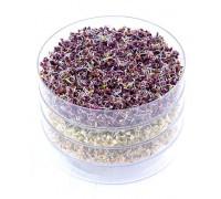 Проращиватель семян микрозелени BIO-NATURA