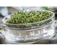 Проращиватель микрозелени стеклянный с металлическим ситом Semini, 200 мл